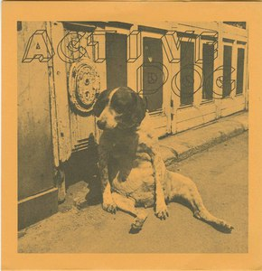 45 active dog pic sleeve