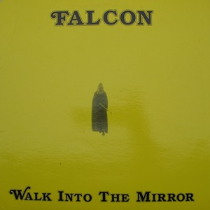 Falcon walk into the mirror witm 0106 cropped