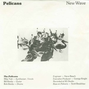 45 pelicans new wave