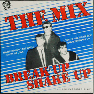 45 mix shake up pic sleeve