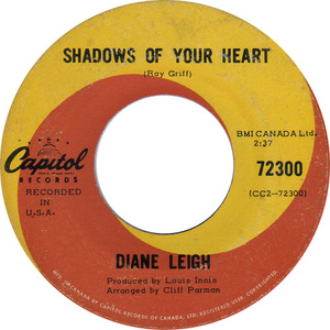 Diane leigh shadows of your heart capitol